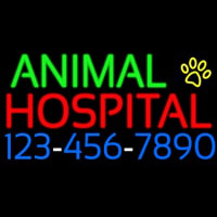 Animal Hospital With Phone Number Neon Skilt