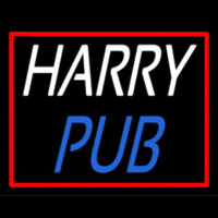 Custom Harry Pub 2 Neon Skilt