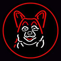 Dog Grooming Red Oval Neon Skilt
