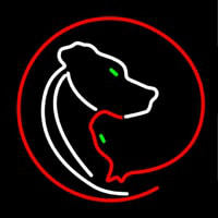 Veterinary Care And Clinic Neon Skilt